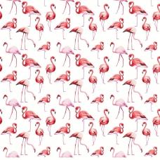 Ткань на отрез перкаль б/з 150 см 13283/1 Фламинго