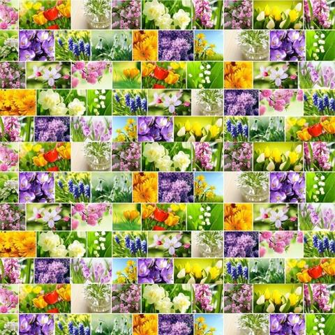 Рогожка 150 см 11550/1 Первоцветы