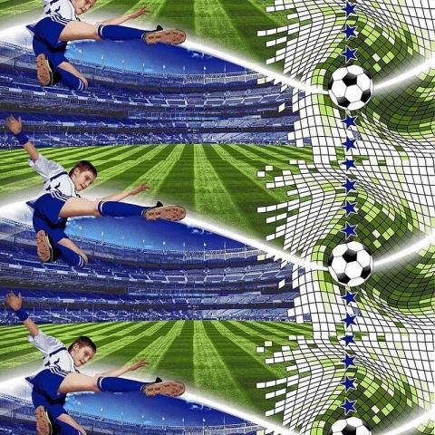 Маломеры поплин 150 см 1693 Футбол 1.4 м