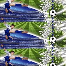 Маломеры поплин 150 см 1693 Футбол 11 м