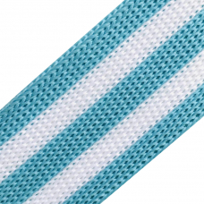 Лампасы №91 белый голубой 2.5см 1 метр